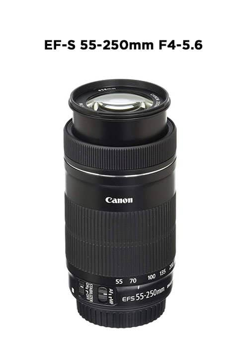 Canon-EF-S-55-250mm-F4-lens